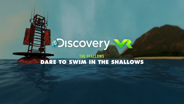 The Shallows | Dare to Swim in the Shallows